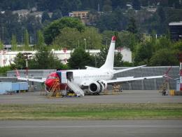 worldstarさんが、レントン市営空港で撮影したノルウェイ・エア・スウェーデン 737-8-MAXの航空フォト(飛行機 写真・画像)