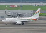 じーく。さんが、羽田空港で撮影したニジェール政府 737-75U BBJの航空フォト(飛行機 写真・画像)