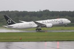 Yuseiさんが、熊本空港で撮影した全日空 787-9の航空フォト(飛行機 写真・画像)