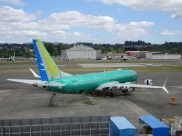 worldstarさんが、レントン市営空港で撮影した厦門航空 737-8-MAXの航空フォト(飛行機 写真・画像)