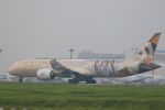 flyskyさんが、成田国際空港で撮影したエティハド航空 787-9の航空フォト(写真)
