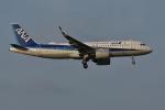 qooさんが、成田国際空港で撮影した全日空 A320-271Nの航空フォト(写真)