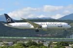 タヌキさんが、台北松山空港で撮影した全日空 787-9の航空フォト(写真)