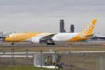 kuro2059さんが、成田国際空港で撮影したスクート 787-9の航空フォト(写真)