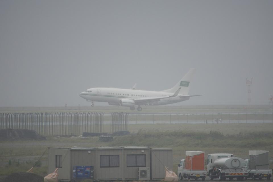 神宮寺ももさんのサウジアラビア王室空軍 Boeing 737-700 (HZ-101) 航空フォト