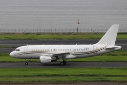 ハム太郎。さんが、羽田空港で撮影したコムラックス・マルタ A319-115X CJの航空フォト(飛行機 写真・画像)