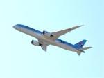 はまちのお寿司さんが、関西国際空港で撮影した大韓航空 787-9の航空フォト(飛行機 写真・画像)