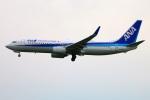 Tomo_mczさんが、福岡空港で撮影した全日空 737-881の航空フォト(写真)