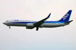 Tomo_mczさんが、福岡空港で撮影した全日空 737-881の航空フォト(飛行機 写真・画像)