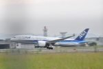 Kanatoさんが、福岡空港で撮影した全日空 787-8 Dreamlinerの航空フォト(飛行機 写真・画像)