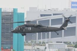 500さんが、東京臨海広域防災公園ヘリポートで撮影したアメリカ陸軍 UH-60L Black Hawk (S-70A)の航空フォト(飛行機 写真・画像)