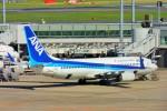 ちっとろむさんが、羽田空港で撮影した全日空 737-881の航空フォト(写真)