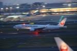Hide0404さんが、羽田空港で撮影した日本航空 777-246/ERの航空フォト(写真)