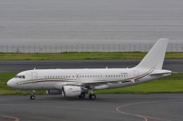 サンドバンクさんが、羽田空港で撮影したコムラックス・マルタ A319-115X CJの航空フォト(飛行機 写真・画像)