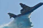 しゅん83さんが、ラメンスコエ空港で撮影したBeriev Aircraft Company Be-200ESの航空フォト(写真)