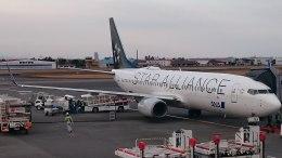 kumachanさんが、宮崎空港で撮影した全日空 737-800の航空フォト(飛行機 写真・画像)