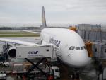 panchiさんが、成田国際空港で撮影したルフトハンザドイツ航空 A380-841の航空フォト(飛行機 写真・画像)