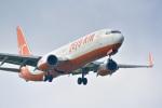 パンダさんが、成田国際空港で撮影したチェジュ航空 737-8Q8の航空フォト(写真)