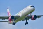 パンダさんが、成田国際空港で撮影したサンデー・エアラインズ 757-21Bの航空フォト(飛行機 写真・画像)
