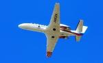 Airway-japanさんが、函館空港で撮影した朝日新聞社 560 Citation Encoreの航空フォト(写真)