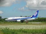 ノリださんが、宮古空港で撮影した全日空 737-781の航空フォト(写真)