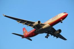 エアさんが、羽田空港で撮影した中国東方航空 A330-343Xの航空フォト(飛行機 写真・画像)