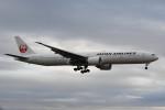 kuro2059さんが、成田国際空港で撮影した日本航空 777-346/ERの航空フォト(写真)
