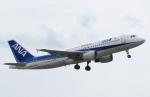 ONOさんが、能登空港で撮影した全日空 A320-211の航空フォト(写真)