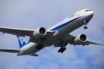 武彩航空公司(むさいえあ)さんが、羽田空港で撮影した全日空 777-381/ERの航空フォト(写真)