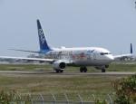 Y.T.さんが、高知空港で撮影した全日空 737-881の航空フォト(写真)