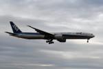 kuro2059さんが、成田国際空港で撮影した全日空 777-381/ERの航空フォト(写真)