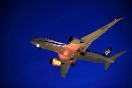 T.Sazenさんが、伊丹空港で撮影した全日空 787-8 Dreamlinerの航空フォト(写真)
