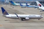 セブンさんが、関西国際空港で撮影したユナイテッド航空 737-824の航空フォト(写真)