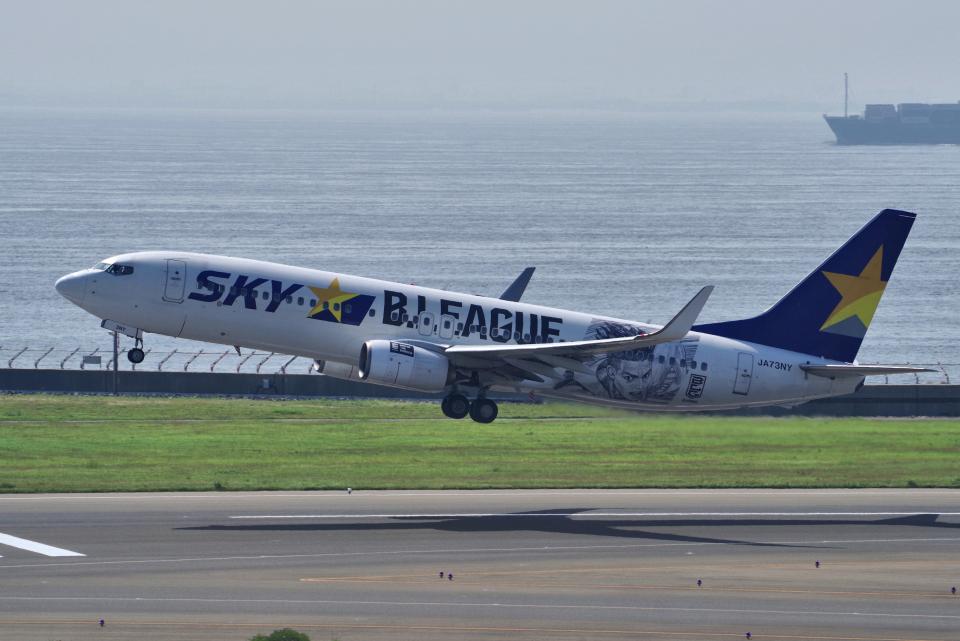 yabyanさんのスカイマーク Boeing 737-800 (JA73NY) 航空フォト
