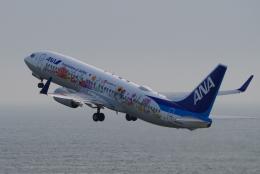 yabyanさんが、中部国際空港で撮影した全日空 737-881の航空フォト(写真)