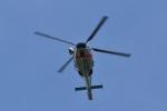 camelliaさんが、静岡空港で撮影した静岡県警察 AS365N1 Dauphin 2の航空フォト(写真)
