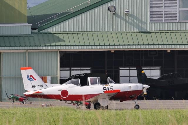 camelliaさんが、静浜飛行場で撮影した航空自衛隊 T-7の航空フォト(飛行機 写真・画像)