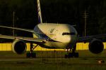 アングリー J バードさんが、福岡空港で撮影した全日空 777-281の航空フォト(写真)