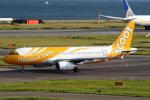 セブンさんが、関西国際空港で撮影したスクート A320-232の航空フォト(飛行機 写真・画像)