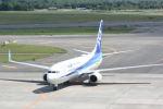 どんちんさんが、新千歳空港で撮影した全日空 737-8ALの航空フォト(写真)