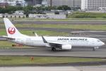 セブンさんが、伊丹空港で撮影した日本航空 737-846の航空フォト(写真)