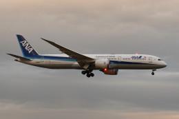 kuro2059さんが、成田国際空港で撮影した全日空 787-9の航空フォト(写真)