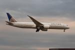 kuro2059さんが、成田国際空港で撮影したユナイテッド航空 787-9の航空フォト(写真)