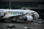 Blue Dreamさんが、成田国際空港で撮影した日本航空 787-9の航空フォト(写真)