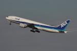 やつはしさんが、羽田空港で撮影した全日空 777-281の航空フォト(飛行機 写真・画像)