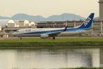 OMAさんが、岩国空港で撮影した全日空 737-881の航空フォト(写真)