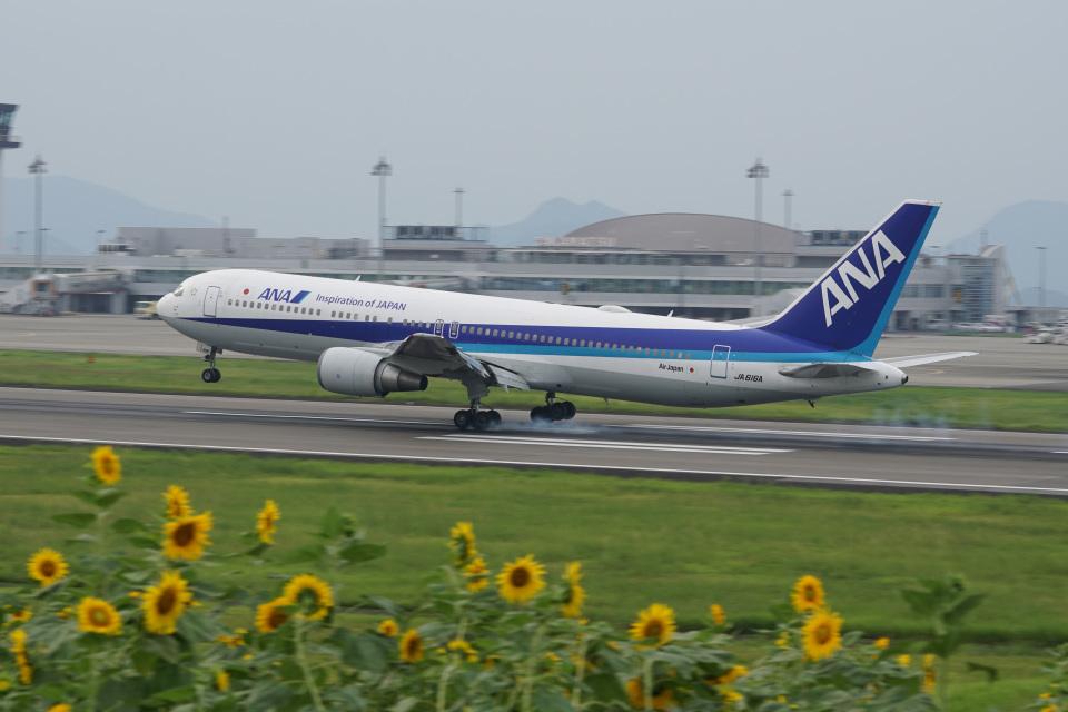 神宮寺ももさんの全日空 Boeing 767-300 (JA616A) 航空フォト