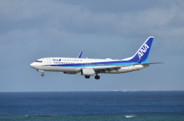 EC5Wさんが、那覇空港で撮影した全日空 737-881の航空フォト(写真)