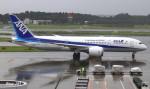 RINA-281さんが、成田国際空港で撮影した全日空 787-8 Dreamlinerの航空フォト(写真)