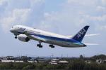 小型機専門家さんが、高知空港で撮影した全日空 787-8 Dreamlinerの航空フォト(写真)